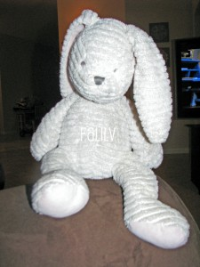 Stuffed Animal, Children's Lovey, Family and Life in Las Vegas