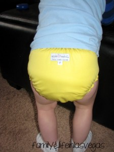 """Diaper Cover"" ""Cloth Diaper"" ""Fluffy Butt"""