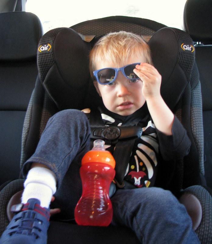"""""""Backseat Driver"""" """"Toddler Attitude"""" """"Peeking Under"""" """"Safety 1st Car Seat"""""""