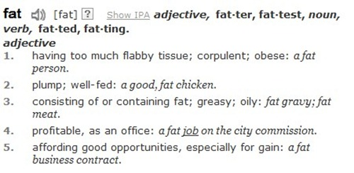 Fat Definition