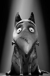 """Tim Burton"" ""Dog"" ""Sparky"""