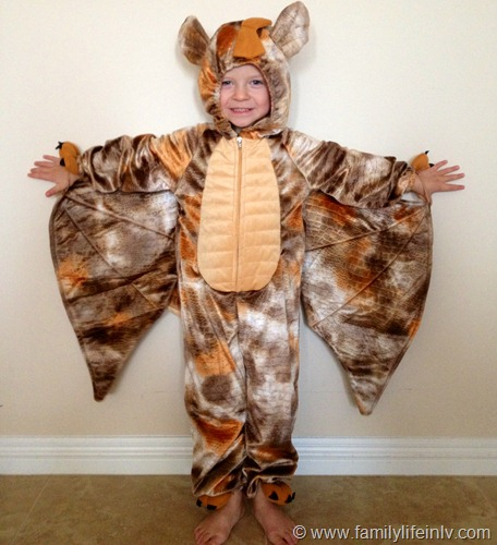 """Halloween Costume"" ""Halloween Costume For Boys"" ""Dragon"" ""Dress Up"" ""Costumes for Kids"" ""HalloweenCostumes.com"""