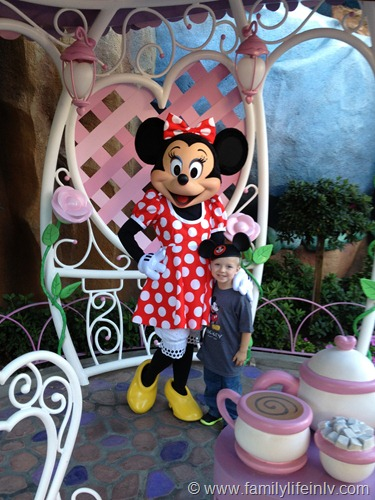 """Disneyland"" ""Disneyland California"" ""Disneyland Family"" ""Disneyland Trip"" ""Disneyland Kid"" ""Mickey Ears"" ""minnie Mouse"""