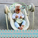 Baby Gear Must Haves   Comfort & Harmony Portable Swing by Bright Starts