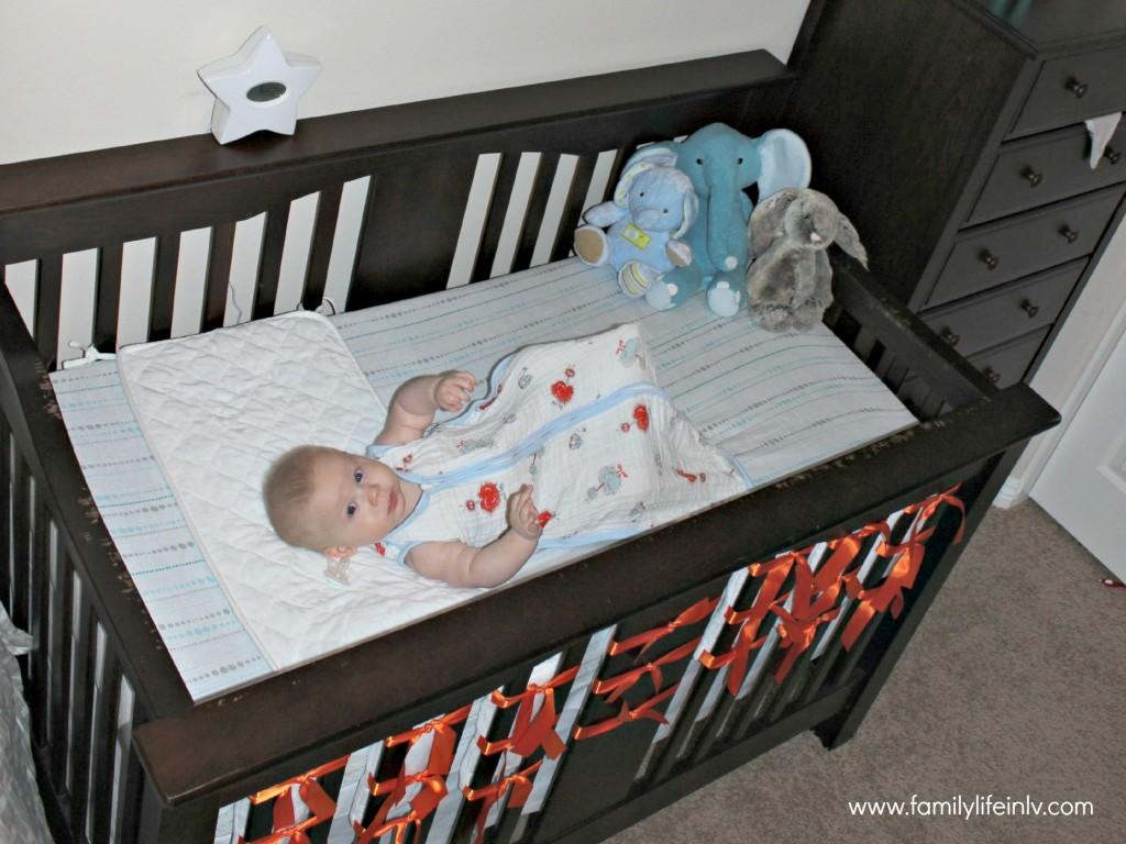 aden+anais crib sheet