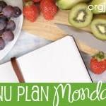 Menu Planning Monday – Week Two