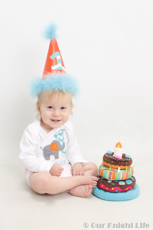 """Baby's First Birthday"" ""1st Birthday"" ""1st Birthday Pictures"""