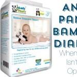 """""""Bamboo diapers"""" """"Andy Pandy Diaper Review"""" """"Andy Pandy Diapers"""" """"eco-friendly disposible diaper"""" """"Bad diaper rash"""" """"get ride of diaper rash"""""""