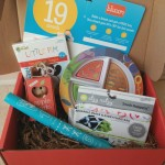 Bluum Subscription Box | 19 Month Old Boy