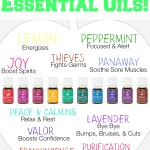 Go Back To School With Essential Oils