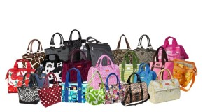 """""""back to school"""" """"back to school lunch bag"""" """"insulated lunch totes"""""""