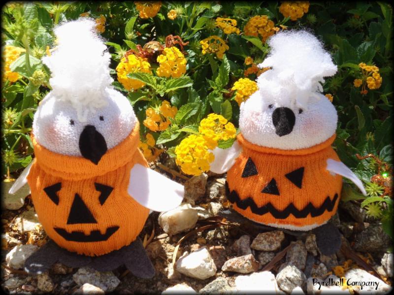 Pumpkin Birds